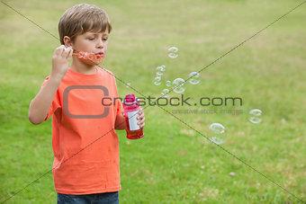 Boy blowing soap bubbles at park