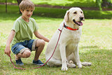Young boy with pet dog at park