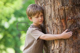 Boy hugging a tree at park