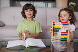 Siblings with book and abacus in living room