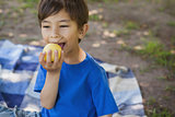 Cute young boy eating a fruit in park
