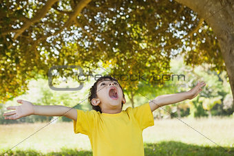 Boy with arms outstretched looking up in park