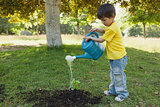 Young boy watering a young plant in park