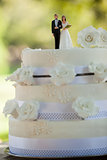 Close-up of figurine couple on wedding cake