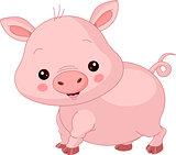 Farm animals. Pig