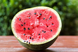 Fresh juicy watermelon against natural green background