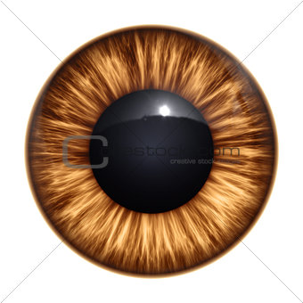 brown eye texture