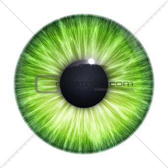 green eye texture