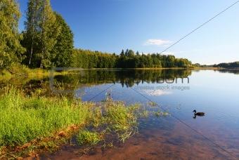 summer scenic