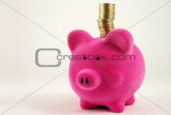 Money Box with stack of Coins