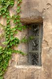 Glass Window with Ivy