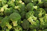 Bunch of Broccoli