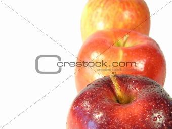 follow the fruit 2