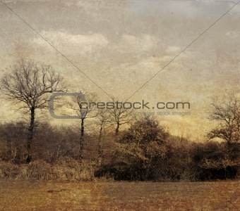 old-fashioned landscape