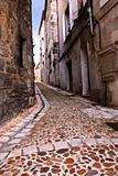 Medieval street in France