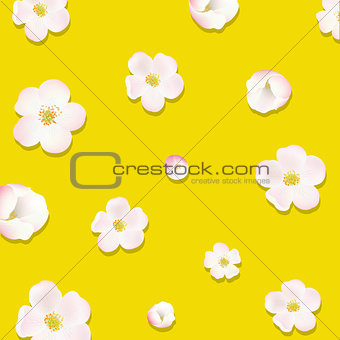 Apple Tree Flowers Poster
