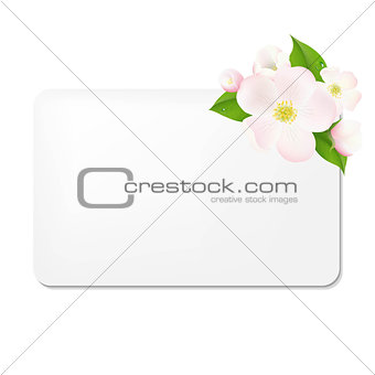 Apple Tree Flowers With Blank Gift Tags