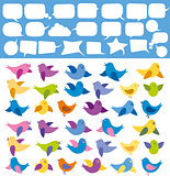 Vector Card With Birds