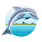 Dolphin on sea background
