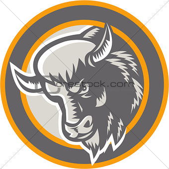 American Buffalo Bison Head Circle Retro
