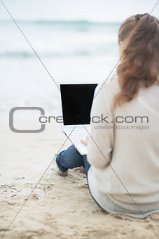 Young woman with laptop on cold beach. rear view