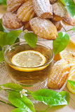 Lemon madeleines with tea