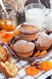 Fresh homemade apricot muffins