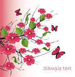 vector cherry blossom with butterfly