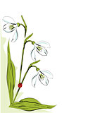Vertical floral design element with snowdrop