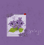 beautiful violet card