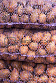A net-bag with potatoes inside