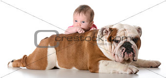 baby with bulldog