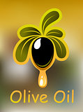 Olive oil poster or card design
