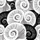 graphic pattern of shells