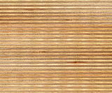 birch wood section texture