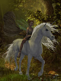 Fairy rides Unicorn