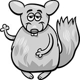 funny chinchilla cartoon illustration