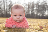 baby on the grass in the sun