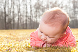 baby searching for blades of grass