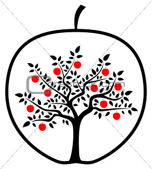 apple tree in apple