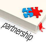 Partnership book