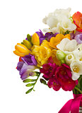 bouquet of freesias flowers close up