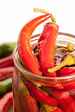 Preserved red hot chili peppers on white background
