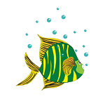 cartoon fish art illustration vector cute funny
