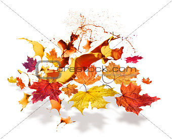 Autumn leaves color burs