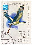 Stamp printed in USSR (Russia) shows a bird Ciconia boyciana wit