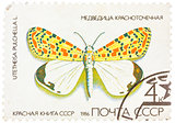 Stamp printed in USSR, shows Butterfly Utetheisa pretty Utetheis