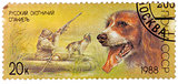 Stamp printed in USSR, shows Russian spaniel, duck hunt, series