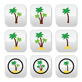 Palm trees, exotic holidays on beach vector colorful icons set