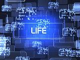 Life screen concept